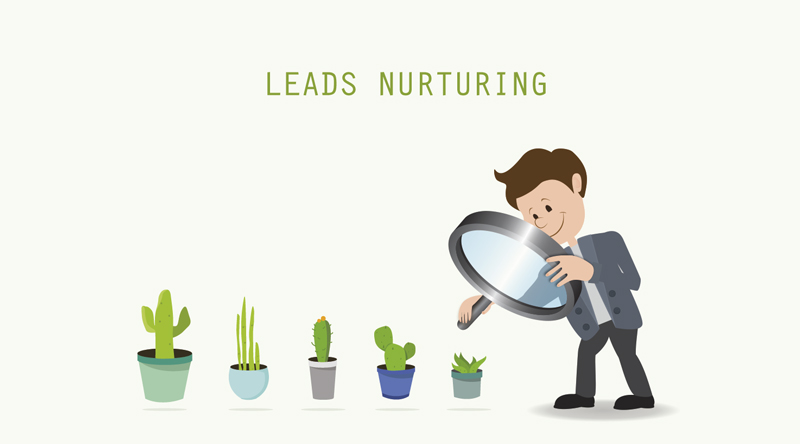 lead - tu web soluciones - Madrid